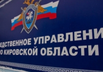 В Кировской области депутат районной думы сбил на автомобиле 12-летнюю девочку, которая погибла